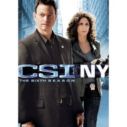 CSI New York Season Six